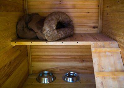 Módulo interior de un Bungalow gatuno